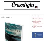 Crosslight review